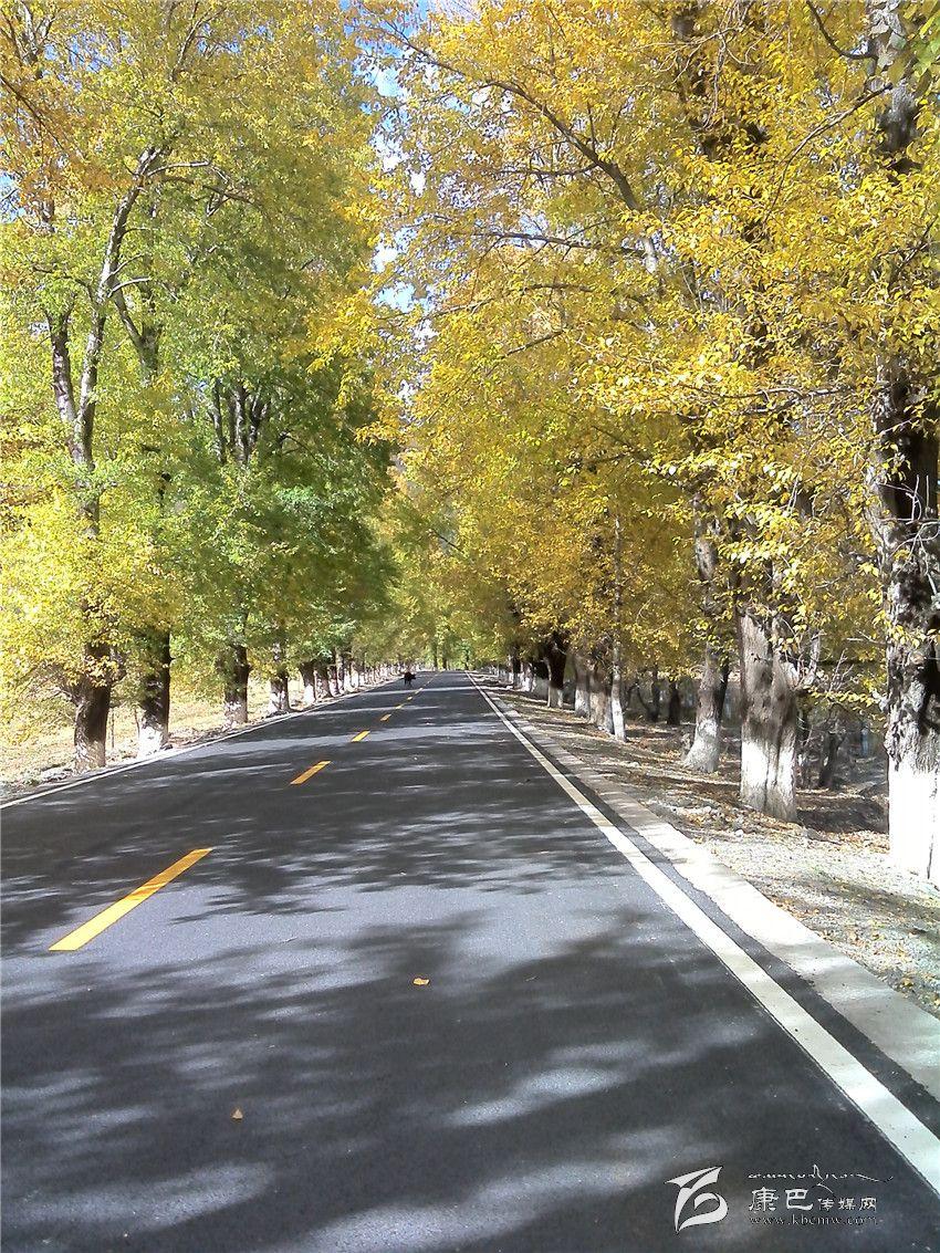 青海省果洛州班玛县,达日县)结合部,沿国道317线经马尔康至省会成都总